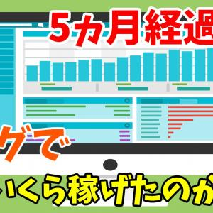 ニートがブログを5ヵ月運営してみた結果・・・【収益・PV公開】