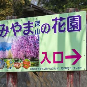 みやまの花園❶