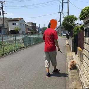 おもひで散歩
