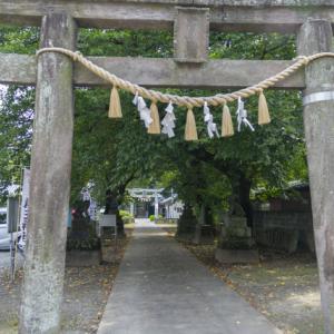 前玉(さきたま)神社 花手水その3