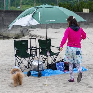 2020夏!!「海水浴編」 砂浜大好き