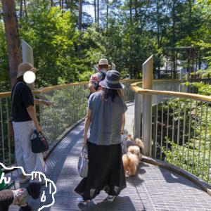 国営アルプスあづみの公園散策 3