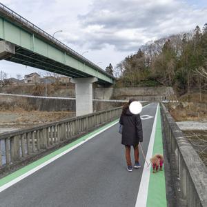 なめこさんのお散歩「橋を渡るコース3」