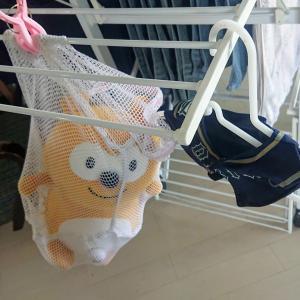 バファローズ☆ポンタを洗ってみた。重曹・洗濯機