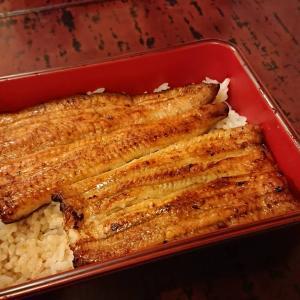 神田の久保田にて鰻に舌鼓を打つ暑い夏の夜