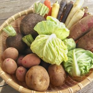 デトックスの必要性とダイエットとの関係