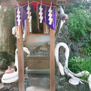 【白蛇と多くの御利益】蛇窪神社(東京都)参拝レポート 境内の様子・御朱印・御利益・由緒・アクセス情報