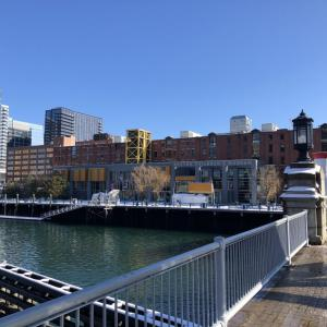 ボストンで日本のお正月を味わう