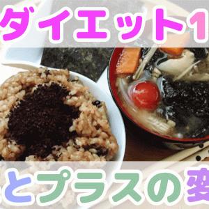 【号外】お米ダイエット1ヶ月の結果・まとめ・プラスの効果etc☆YouTube13本目!