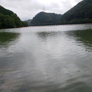へっぽこ釣行記 7/13 小規模ダム(マッディー~ステイン)  強いルアーで勝負する!!