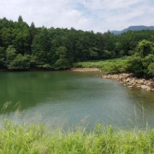 へっぽこ釣行記  6/22  野池(マッディー?) 池干すのかな?