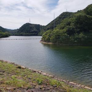 へっぽこ釣行記  7/21   小規模ダム(ステイン)  デッドスローリトリーブが吉?
