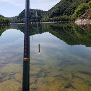へっぽこ釣行記  7/26   小規模ダム(ステイン)  トップをスローにやるのが吉?