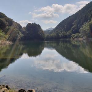 へっぽこ釣行記  7/29 小規模ダム(ステイン) トップ~サブサーフェスがキモ!?
