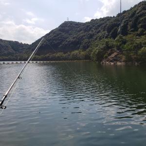 へっぽこ釣行記  9/20  小規模ダム(ステイン)  パイロットルアーは、、、