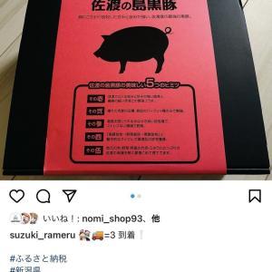 【ふるさと納税】美味しい肉汁溢れる黒豚100% 新潟佐渡の島黒豚ハンバーグを食べました!!