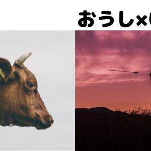 牡牛座と射手座の相性を語る!「安定 VS 自由」どちらを取るか。