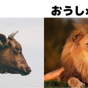 牡牛座と獅子座の相性を徹底解説!意地の張り合いに要注意な関係?