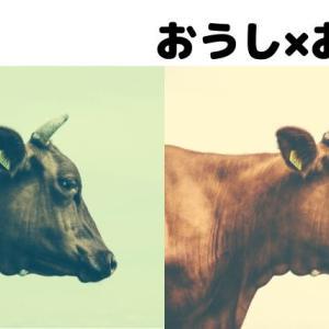 【12星座相性】牡牛座同士はマイペースにのんびりできる環境が必要!