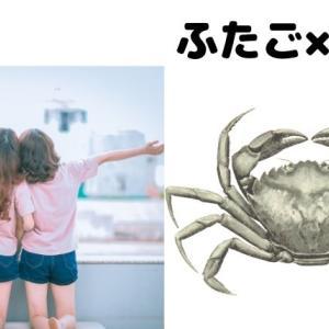 【12星座相性】双子座と蟹座で風通しの良く落ち着く場所を作ろう!