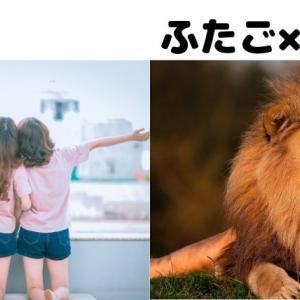 【12星座相性】双子座と獅子座は一緒にワクワクする時を過ごそう!