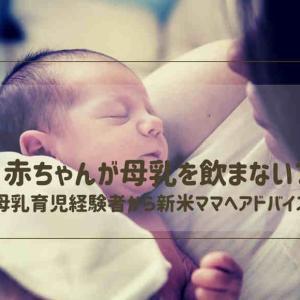 赤ちゃんが母乳を飲まない?母乳育児経験者から新米ママへアドバイス