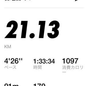 練習ハーフマラソン自己ベスト更新!1時間35分切りペース【株マラ日記37.】