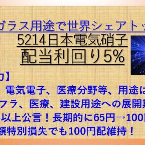 30年来安値更新! 日本電気硝子(5214) 配当利回り5% 【資産株123.】