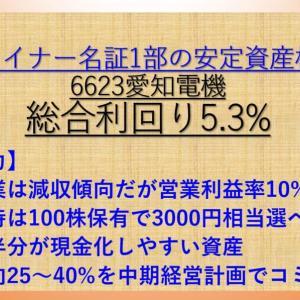 【株主優待】3000円相当の選べるギフト! 愛知電機(6623) 配当+優待利回り5.3% 【資産株.126】