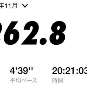 30km走自己ベスト更新! サブ3.05ペース! 2020年11月のマラソン走行距離 262km
