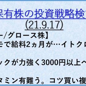 保有株の投資戦略6(21年9月17日) バリュー株/大型株/資産株