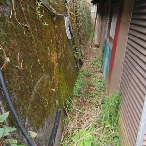 給水管敷設~空き家リノベーション#4【ガーデン作り】
