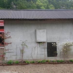 小屋の屋根の嵩上げ②~空き家リノベーション#47【サニタリー棟】