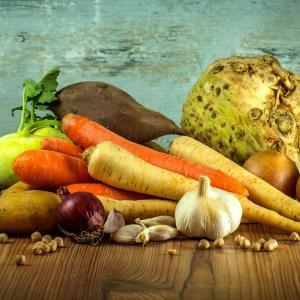 【プチ副業】家庭菜園から始める趣味+実益の農業