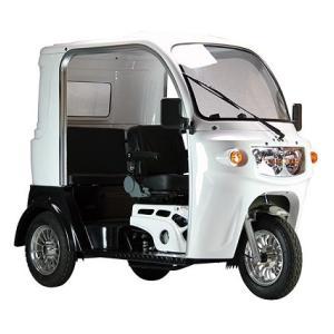 ● 日本では珍しい3人乗り125cc屋根付きトライク、チョイ乗り可能なトライクとは?