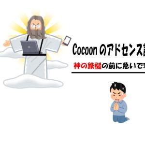 【Cocoonのアドセンス設定】Googleから神の鉄槌を受ける前に速攻で設定変更した