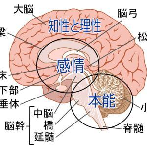 後頭部周辺の違和感をほっておくと自律神経失調症に発展するかもしれません