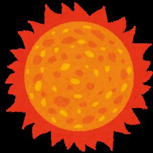 【変温動物】2度の気温上昇でトカゲの食習慣に変化、実験で明らかに 英論文