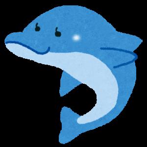 【画像】フグで遊ぶイルカ
