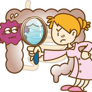 明日は大腸の内視鏡検査をしてきます