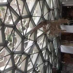 上海のおススメ昆虫関連スポット