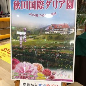 秋田空港に秋田国際ダリア園のポスターが