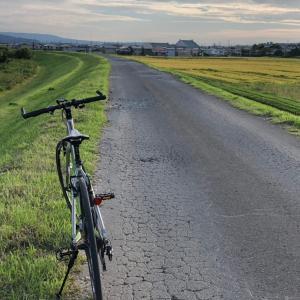 今日も夕方自転車散歩