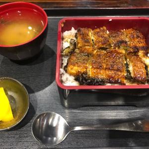 再)天津の和食「竹葵」で土用の鰻祭り