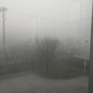 濃霧の日、そして天津で紅葉その2~北宁公園で真昼の恐怖体験
