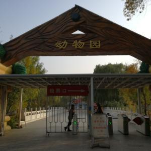 天津動物園に行ってみた!パンダは意外と見やすかった