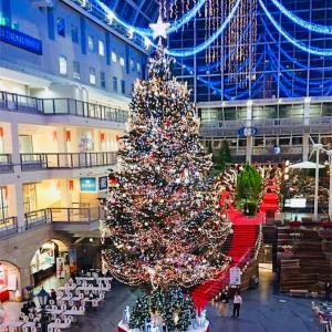 1人で見知らぬ地でクリスマス過ごすなう