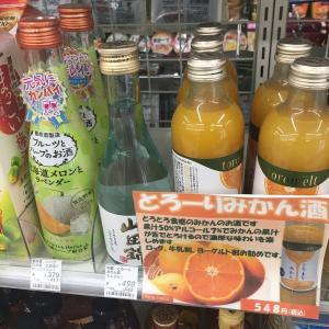 【コンセプト】フルーツのお酒を最近よく見かける