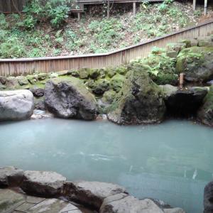 滝を観ながら露天風呂に入れる夢幻の里春夏秋冬で滝が観れなかった!