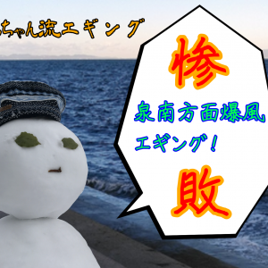 2019/11/30泉南方面エギング惨敗!